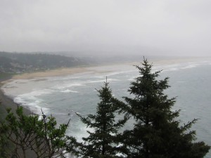 view of beach from Oregon coastal highway