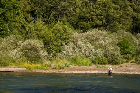Fisherman on Willamette River